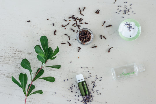 lavender and clove for housecleaning