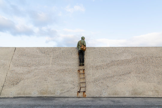 Man on a ladder looking over the wall