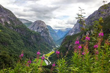 Photo sur Aluminium Lavende Stalheim pass in mountains in Norway