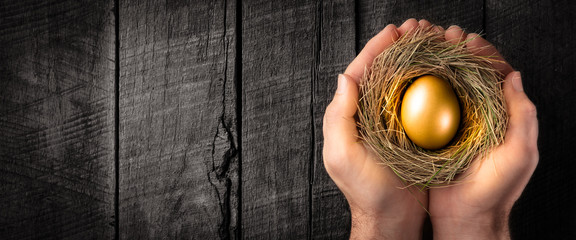 Protecting Hands Holding Golden Nest Egg On Wooden Table - Investment Protection Concept