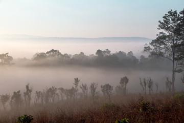 Foto op Canvas Donkergrijs fog in mountains