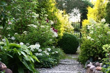 Foto auf Gartenposter Garten Summer solar evening. Along a garden stony path various ornamental plants grow and blossom.