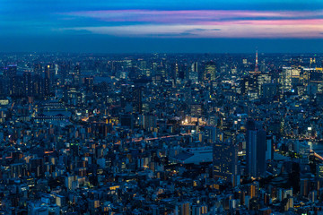 Scenic panoramic view of Tokyo at sunset from the Skytree, the tallest tower in the world, Japan