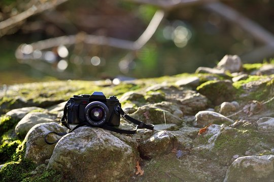 Appareil photo nature