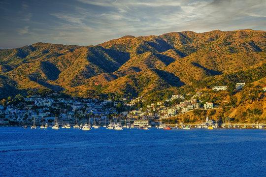 Dawn in Catalina Hills near Avalon