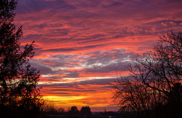 Poster Crimson Amazing deep orange and pink sunset with trees