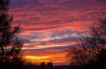 Foto auf Acrylglas Hochrote Amazing deep orange and pink sunset with trees