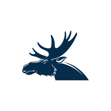 Moose or wild elk isolated deer head with antlers. Vector stag hunting sport mascot
