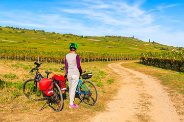 Young woman cyclist resting on road among vineyards near Riquewihr and Kaysersberg villages, Alsace Wine Route, France