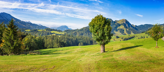 Foto op Canvas Alpen Panoramic image of a mountain pasture in the allgaeu alps at Zehrerhof near Unterjoch, Bavaria, Germany