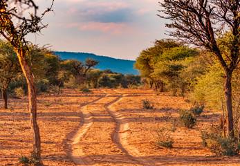 In de dag Oranje eclat Beautiful landscapes of Namibia, Africa