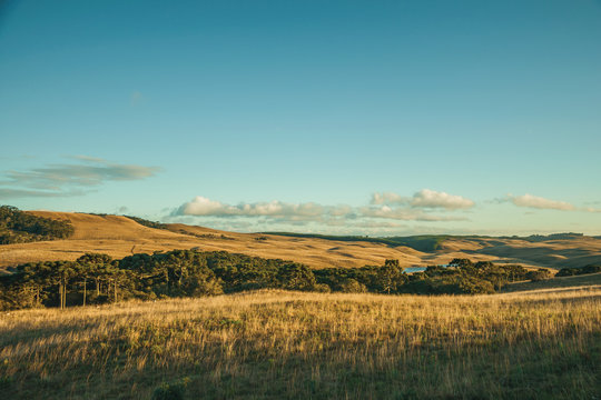 Landscape of rural lowlands called Pampas