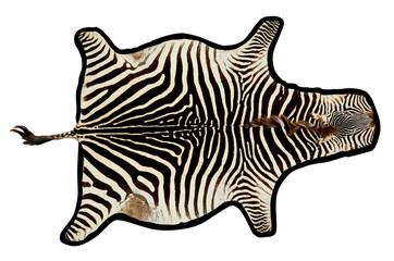 Zebra rug or wall art with clipping path.
