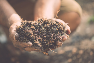 Hand holding mixed soil for plant in the garden. Home and garden decoration concept Fotomurales
