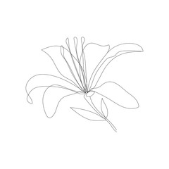 Flower One Line Drawing. Continuous Line Drawing. Black White Botanical Artwork. Minimalist Floral Design. Vector EPS 10.