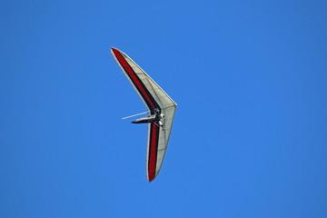 Fototapete - Hang glider flying in a blue sky