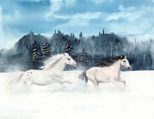Watercolor picture of two  white horses running on  a snowy field with a distant forest  on the background