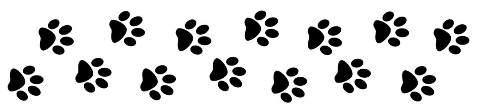 Paw prints dog track banner divider border design template.