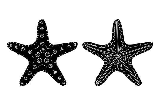 vector sea beach object clipart