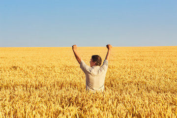 Foto auf AluDibond Melone Farmer walking through a golden wheat field