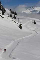 Snowshoer on sunny snow covered mountain trail, Vals, Canton of Grisons, Switzerland