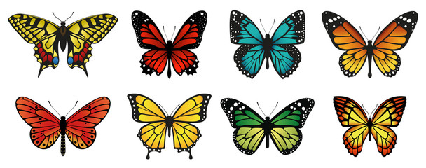 Different butterflies collection. Vector illustration