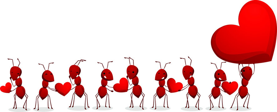 ants carrying hearts