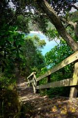 Beautiful coastal track, Ohope, Bay of Plenty