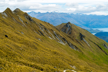 Beautiful view from Roys Peak in New Zealand to the grass hills (Wanaka, New Zealand)
