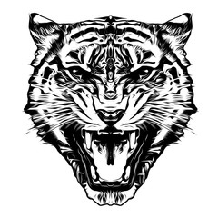 black and white artistic tiger isolated on white background