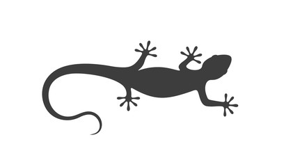 Lizard logo.  Isolated lizard on white background