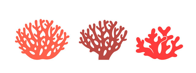 Coral logo. Isolated coral on white background. Set