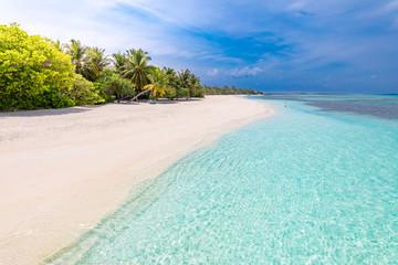 Idyllic summer beach scenery, Maldives island coastline with palm trees over white sand under blue...