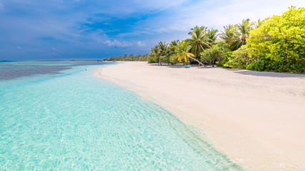 Wall Mural - Idyllic summer beach scenery, Maldives island coastline with palm trees over white sand under blue sky