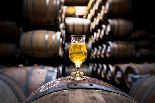 Beer Barrels with glass of Craft Beer