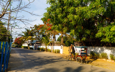 Cyclo Pousse on a back road in Morondava, Madagascar