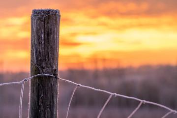 Mit Reif bedeckter Zaunpfahl im Sonnenaufgang