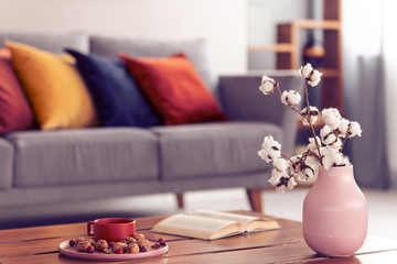 Close-up of cotton flowers in a pink vase standing on a wooden coffee table with an elegant living room interior in the background