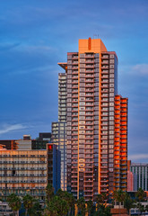 Fototapete - Condo Tower in Golden Hour in San Diego