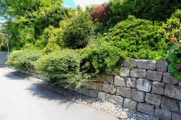 Photo sur Aluminium Gris Garten- und Landschaftsbau: Mauer aus Natursteinen mit üppig wachsenden Grünpflanzen und Sträuchern