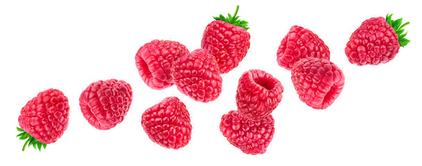 Raspberry isolated on white background, falling raspberries, collection Fototapete