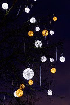 Illuminated decorations on a bare tree in Tallinn
