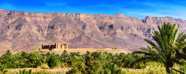 Tuinposter Zalm Mountain landscape, Oasis of the Draa Valley, Morocco.