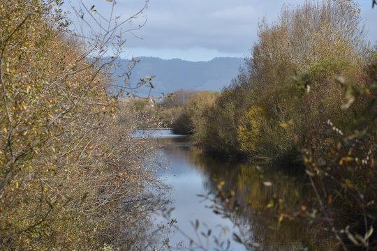 Watsonville Slough, one of many scenic wetlands surrounding Watsonville, California