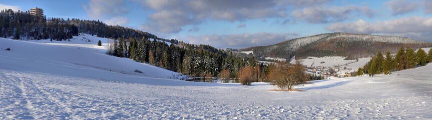 Panorama - Stacja narciarska Słowtwiny -  wieża widokowa