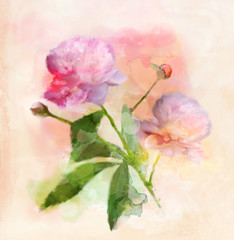 Flowers digital painting collection - watercolor peonies in a vintage style