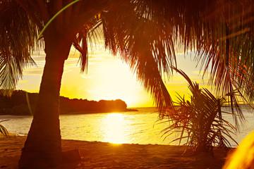 Recess Fitting Magenta Bright Sunset Palms Maldive Ocean Island View