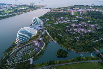 Wall Mural - aerial view of garden by the bay park in Singapore in the evening