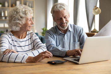 Satisfied elderly couple using laptop and online banking