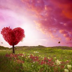 Boom van liefde in het voorjaar. Rode hartvormige boom bij zonsondergang. Prachtig landschap met bloemen. Liefde achtergrond
